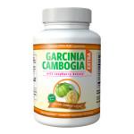 pilule-garicnia-cambogia-extra