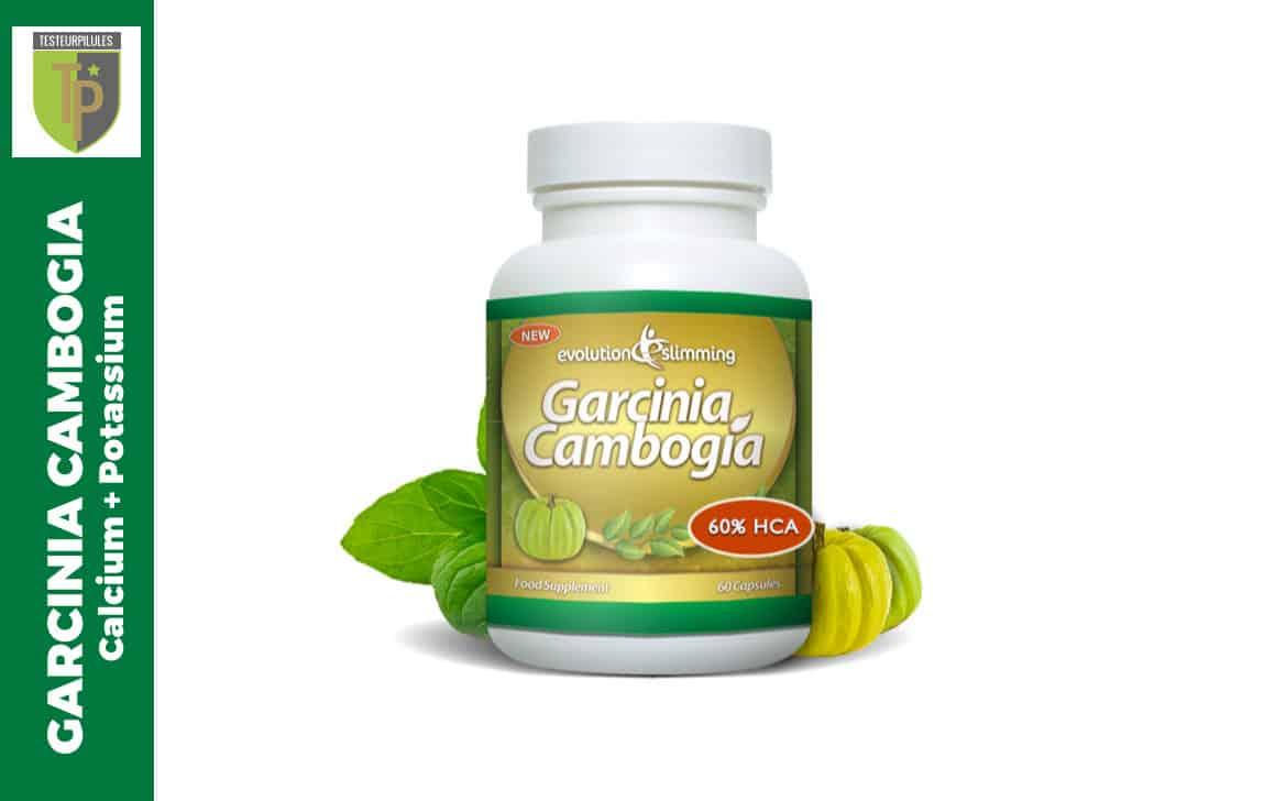 Garcinia Cambogia Calcium Potassium