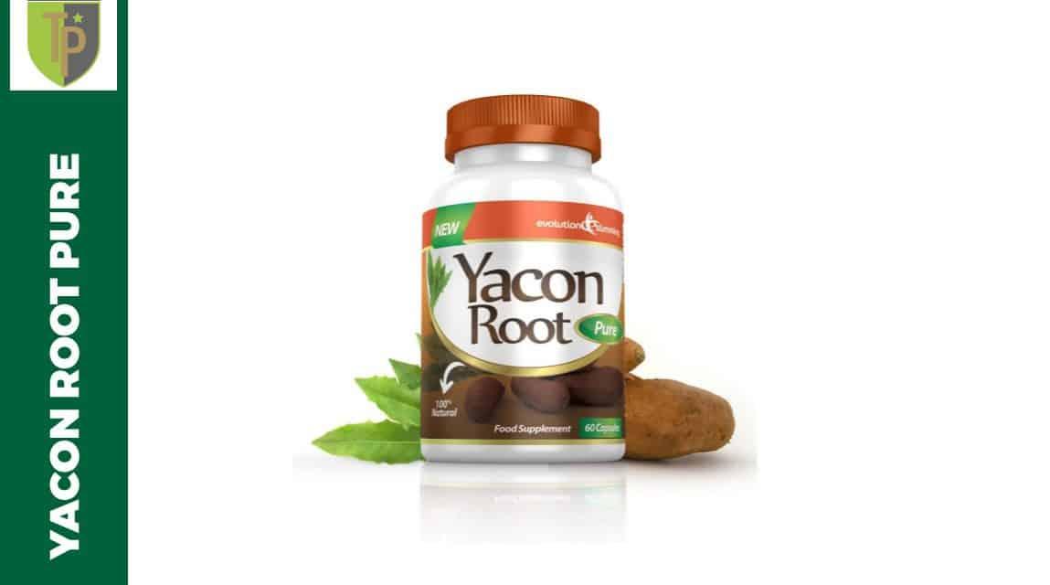 Yacon root pure avis - Cherche coupe faim efficace ...
