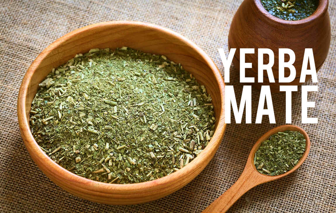 Yerba Mate Blog