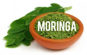 Moringa Blog