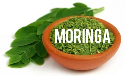 Moringa, le Super Aliment