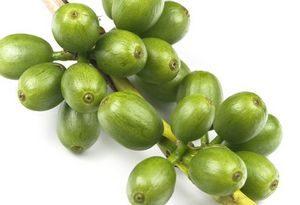 graines-de-cafe-vert-pour-perdre-du-poids