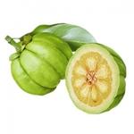 garcinia-cambogia-ingredient-de-calxpel