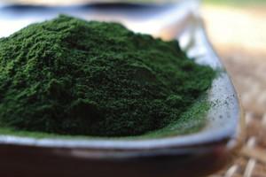 Algue qui fait maigrir r gime pauvre en calories - Comment utiliser agar agar comme coupe faim ...