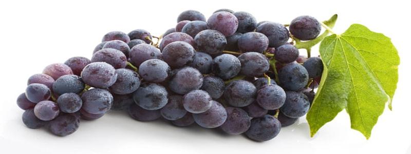 raisin-source-de-resveratrol-extrait-de-vin-rouge