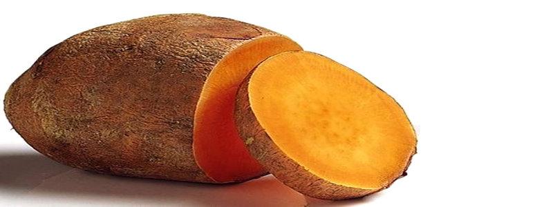 yacon-pour-maigrir-le-legume