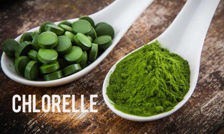 Chlorelle, une algue complète