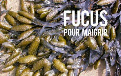 Fucus Pour Maigrir Blog