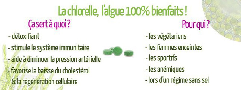 usages-medicinaux-de-la-chlorelle-pour-maigrir