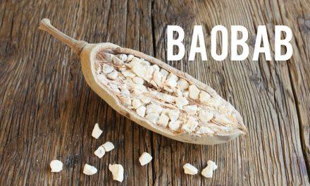 Baobab, l'arbre qui fait fureur outre-manche