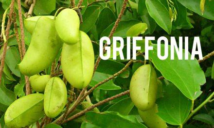 Griffonia, vous coupera-elle l'appétit?
