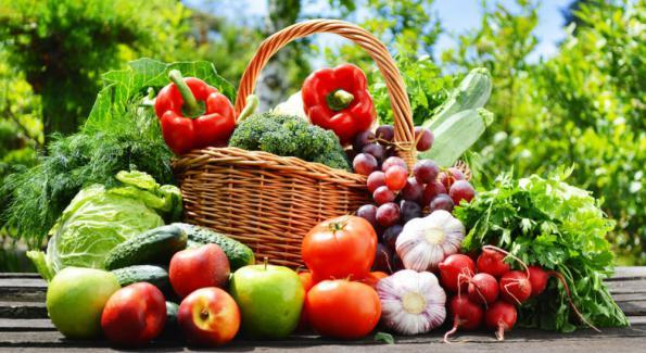 juice-rite-panier-legumes-et-fruits-testeurpilules.com