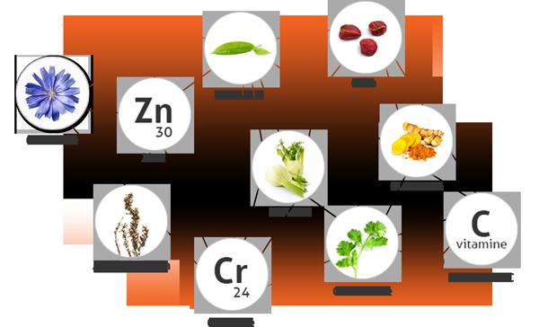 luxeol-minceur-ingredients-testeurpilules.com
