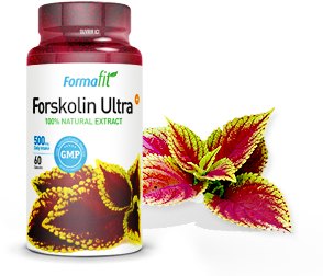 Formafit Forskolin Ultra Plus, pour un apport optimal en forskoline