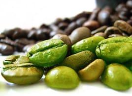 fat-killer-cafe-vert