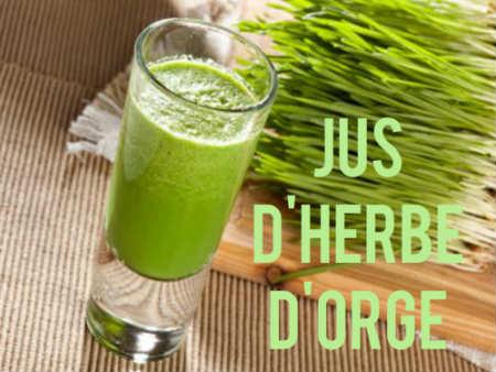 Jus d'herbe d'orge, une boisson aux vertus étonnantes