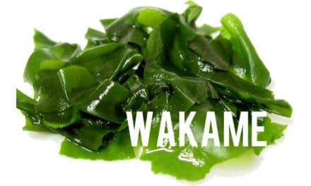 Wakamé, une algue brune 100% vertus minceur