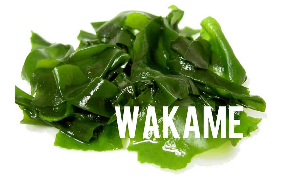 Wakame Blog