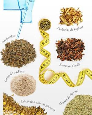 BioSlim Daily Power Cleanse Ingredients Site