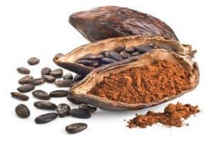 Extrait de Cacao