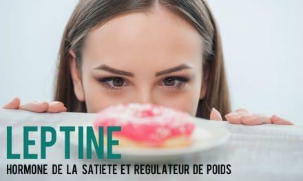 Leptine, hormone de la satiété et régulateur de poids