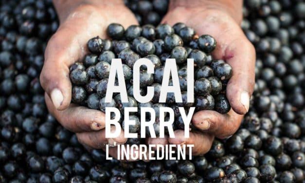 Acai Berry, la baie chocolatée aux vertus minceur venue du Brésil!