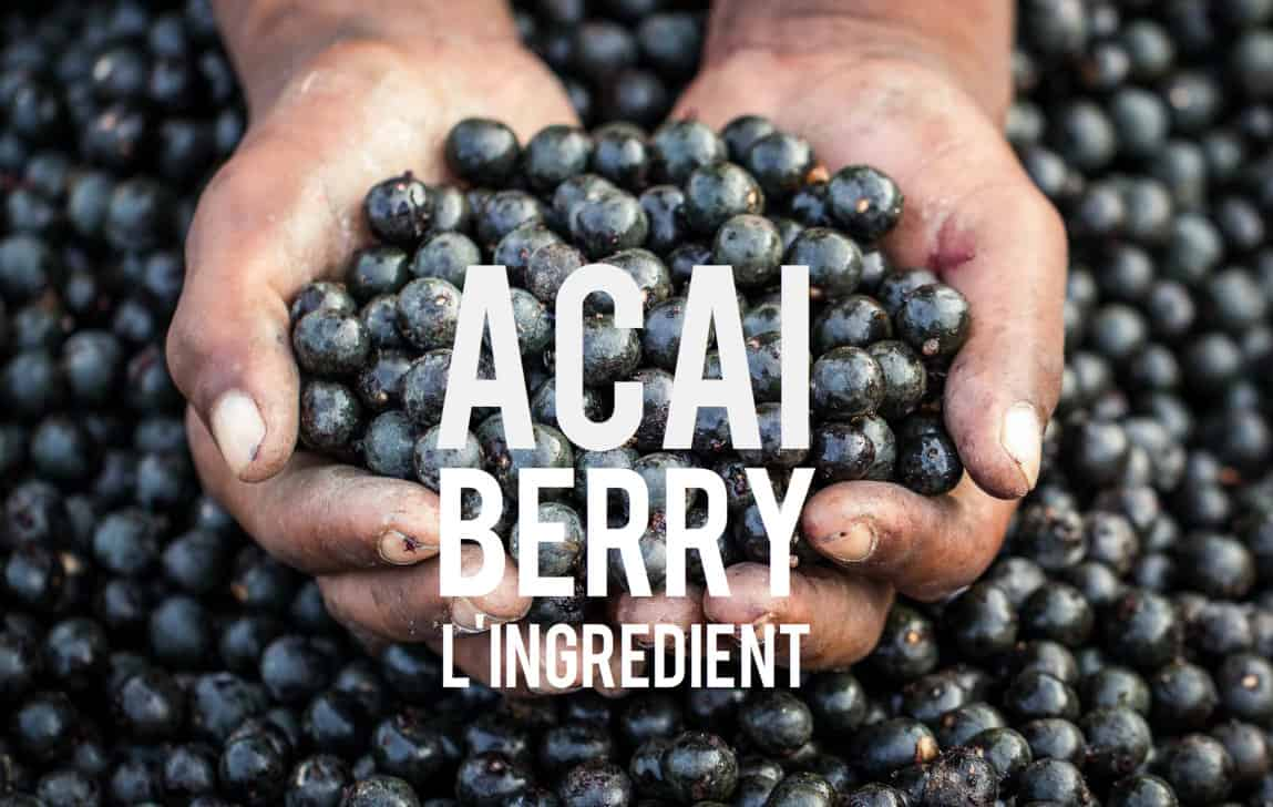 Acai Berry Ingredient Blog