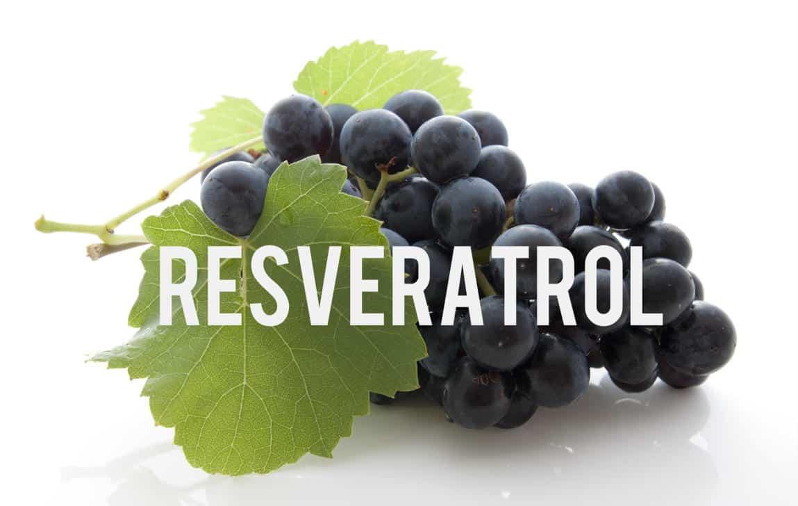 Resveratrol Blog