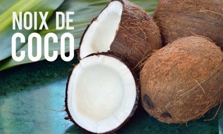 Noix de coco, le fruit aux multiples vertus mieux-être