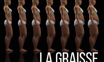 La graisse, ce qu'il faut réellement savoir à son sujet