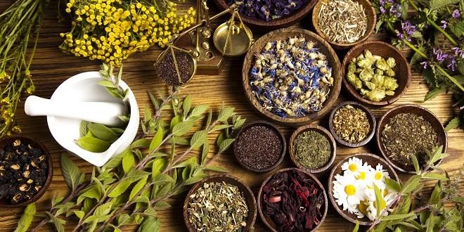 Cure Detox Dextrom aux extraits de plantes